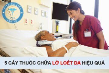 cay-thuoc-chua-lo-loet-da cây thuốc chữa lở loét da