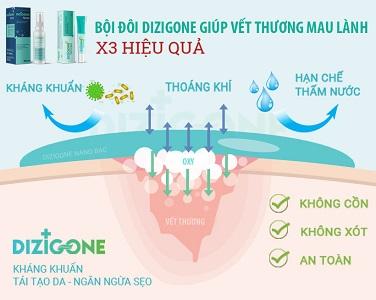 Dung dịch kháng khuẩn Dizigone và kem Dizigone Nano Bạc – Bộ đôi vàng trong việc chăm sóc vết loét 1
