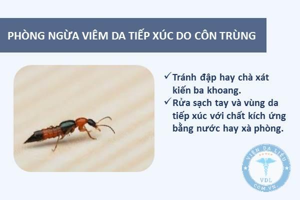 IV. Cách phòng tránh viêm da tiếp xúc do côn trùng bạn cần biết 1
