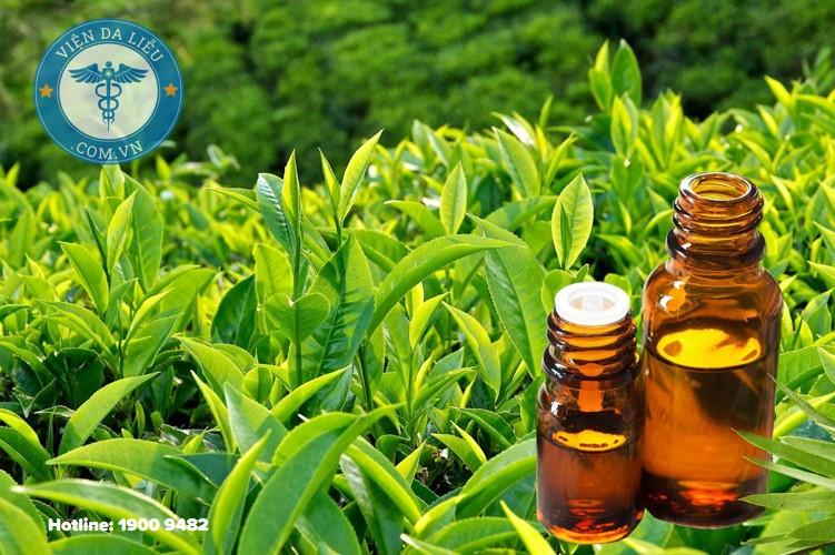 4. Tinh chất trà xanh, chanh muối 1